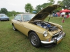 ws_2014_carshow-0993